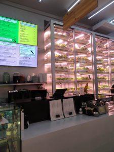 verttikaal groente verbouwen bij Good Bank in Berlijn